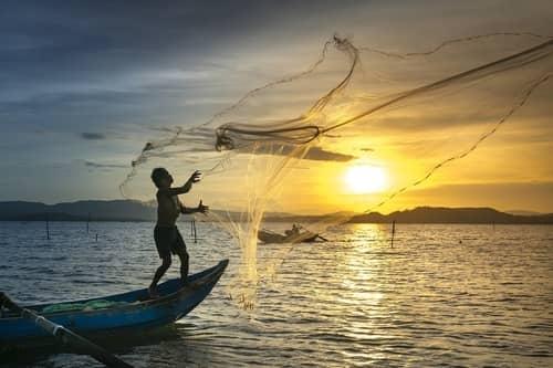 Pescando peixe