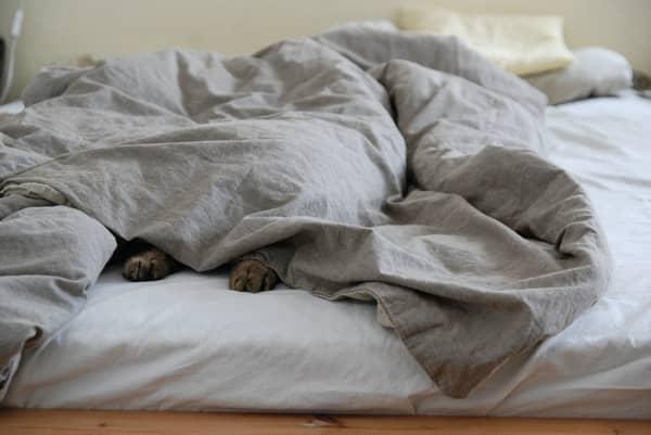 Cobertores na cama