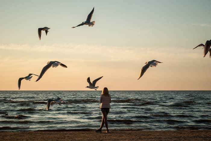 significados de sonhar com um desaparecimento