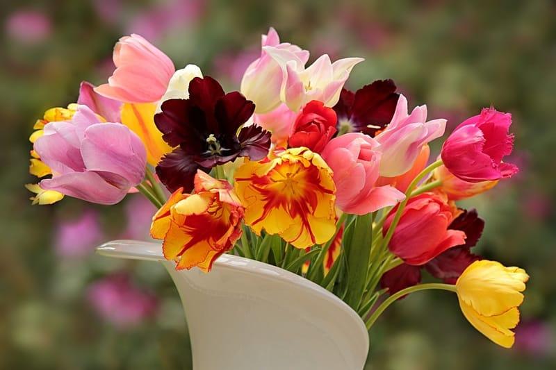 Sonhar com flores no Jogo do Bicho